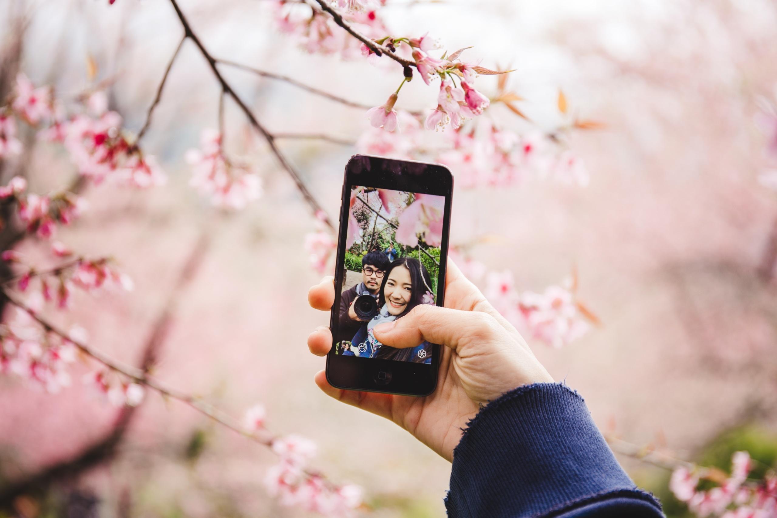 綺麗 な 写真 の 撮り 方